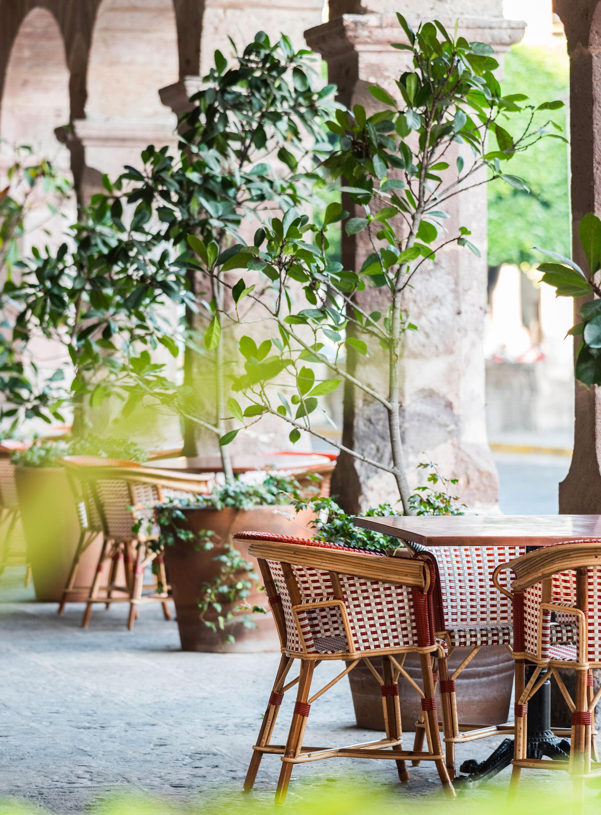 luis_laplace-Cafe_Michelena_Morelia-8