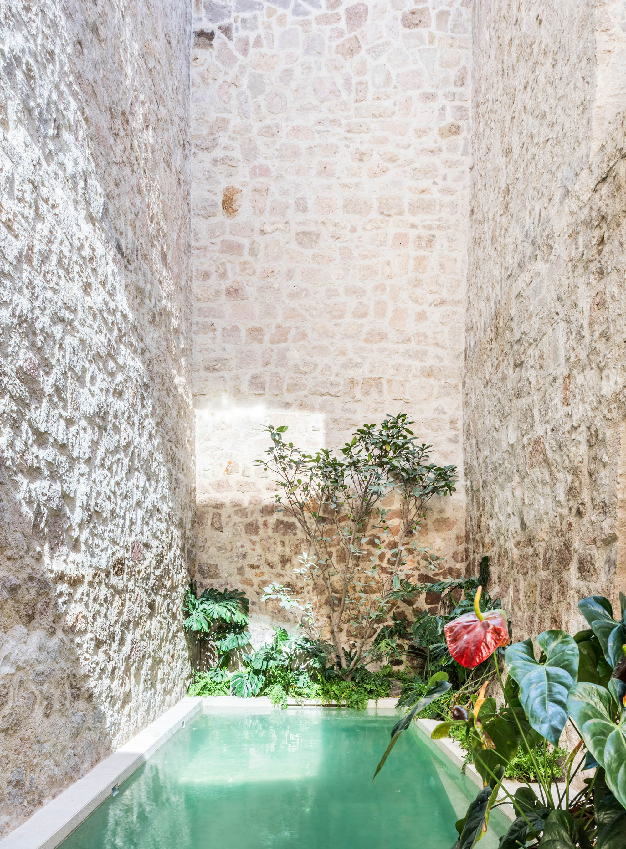 luis_laplace-Casa_Michelena_Morelia-6